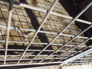 Kennel floor needs repair